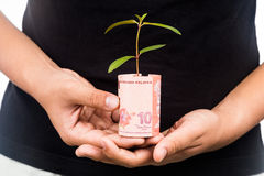 Concept of presenting plant growing from Malaysia Ringgit, symbo Royalty Free Stock Photo
