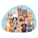 Concept of Purebred Dogs Sitting and Looking Flat. Concept of purebred dogs. Vector illustration of Bernese Mountain and Central Asian hounds, French and English Stock Images