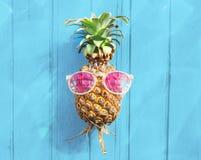 Concept régénérateur de fruit tropical de lunettes de soleil d'ananas Images libres de droits