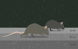 Concept rat race metaphor Royalty Free Stock Photography
