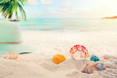 Concept of recreation in summertime on tropical beach. Summer accessories on sandy in seaside summer beach with starfish, shells, coral on sandbar and blur sea Royalty Free Stock Photos