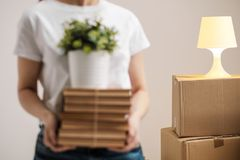 The concept of relocation and moving to a new home. Close-up, female hands hold a pile of books and a green plant in a stock image