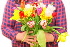 Concept romantique Fermez-vous des fleurs colorées de tulipe dans des mains femelles Bouquet de fleur colorée et fraîche Concept  Photographie stock libre de droits
