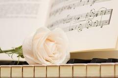 Concept romantique - le blanc a monté sur des clés de piano Photos stock