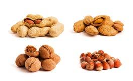 Concept sain d'aliment biologique Les noix se ferment vers le haut photos libres de droits