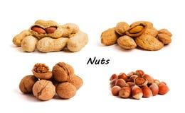 Concept sain d'aliment biologique Les noix se ferment vers le haut photographie stock libre de droits