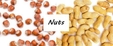 Concept sain d'aliment biologique Les noix se ferment vers le haut Vue supérieure images libres de droits