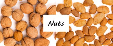 Concept sain d'aliment biologique Les noix se ferment vers le haut Vue supérieure photo libre de droits