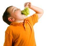 Concept sain de consommation avec l'enfant mangeant des raisins Photographie stock libre de droits