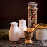 Concept of salt and pepper accessories Stock Images