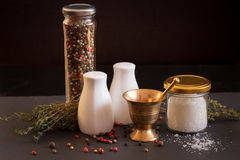 Concept of salt and pepper accessories Stock Image