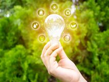 Free Concept Save Energy Efficiency. Hand Holding Light Bulb With Icon On Blurred Tree Background Stock Photo - 173674130