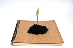Concept for save environment Royalty Free Stock Images