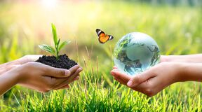 Free Concept Save The World Save Environment The World Is In The Grass Of The Green Bokeh Background Royalty Free Stock Images - 196981459