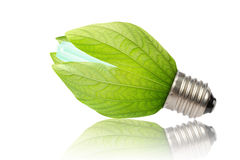 Concept of saving energy Royalty Free Stock Photography