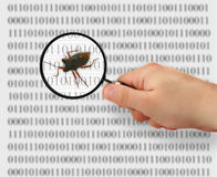 Concept of searching for a bug royalty free stock images