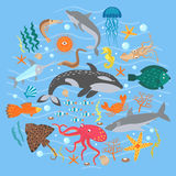 Concept Set of Cute Sea animals fish. Vector illustration. Stock Photos