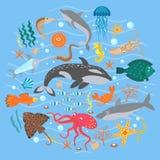 Concept Set of Cute Sea animals fish. Vector illustration. Stock Photos