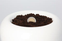 Euro Coin Growing from Soil Royalty Free Stock Photo
