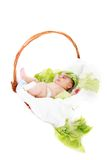 Concept shot of newborn baby Royalty Free Stock Images