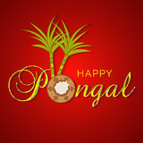 Concept of South Indian festival Happy Pongal celebrations. South Indian harvesting festival, Happy Pongal celebrations with traditional mud pot and sugarcane Royalty Free Stock Image