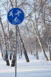 Concept sports activities in the winter. Sign of the Bicycle, skating and Jogging Royalty Free Stock Photography