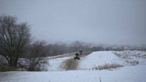 Concept of sports, healthy recreation. Quad Biking in the snow. ATV riding in the snow stock video footage