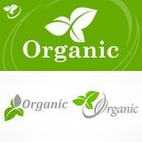 Concept spring banner Stock Photos