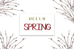 The concept of spring. Holiday card with text Hello Spring. Flowering willow branches on a white background royalty free stock photos