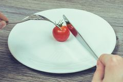 Concept of strict dieting. Woman`s hands trying to cut little ch stock images