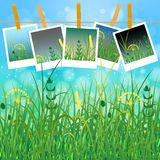 Concept Summer. Sky, blur, field grass. Summer photos on clothespins on a rope. You can insert your photos Stock Photography
