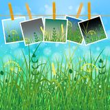 Concept Summer. Sky, blur, field grass. Summer photos on clothespins on a rope. You can insert your photos Royalty Free Stock Images