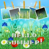 Concept Summer. Sky, blur, field grass. Concept Summer. Sky, blur, meadow with herbs and flowers. Summer photos on clothespins on a rope. You can insert your Royalty Free Stock Photo
