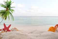 Concept of summertime on beach. Royalty Free Stock Images