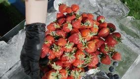 Concept superbe alcalin de nourriture pour l'équilibre de pH avec le fruit frais, légumes, hauts dans Omega 3, antioxydants, anth banque de vidéos