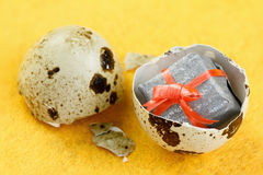 The concept of surprise  Gift box in the egg. Stock Image