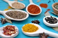 Spices in wooden spoons on blue background. royalty free stock photo