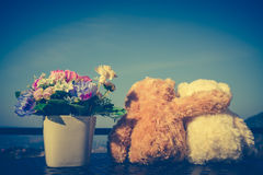 Concept teddy bears couple with love and relationship for valent Royalty Free Stock Photo
