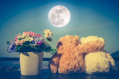 Concept teddy bears couple with love and relationship for valent. Back view of two doll hugging on table with flowers in vase. Blue sky with full moon background Stock Photography
