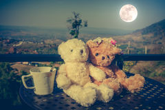 Concept teddy bears couple with love and relationship for valent Royalty Free Stock Image