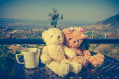 Concept teddy bears couple with love and relationship for valent Royalty Free Stock Photography