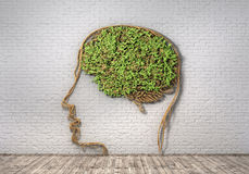 Concept of thinking. Royalty Free Stock Photography