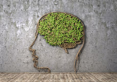 Concept of thinking. Stock Photography