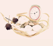 Concept of time rock and rose on pink background. Time rock and rose on pink background Stock Photos