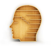 Concept of training. Empty bookshelf in form of man head. Science about human. Psychology. A human have no knowledge Royalty Free Stock Images