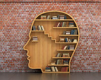 Concept of training. Wooden bookshelf full of books in form of man head on a bricks background. Science about human. Psychology. A human have more knowledge royalty free stock photos
