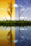 Concept transition seasons Royalty Free Stock Image