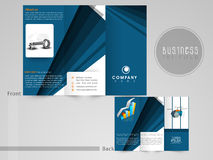 Concept of tri-fold flyer or template for business. Stock Images