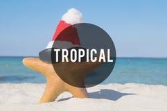 Concept tropical de vacances de vacances d'amitié de plage d'été Photographie stock libre de droits