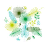 Concept tropical leaves set for print and web projects. vector  Stock Photo